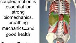 hqdefault - Postural Distortion Lower Back Pain