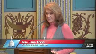 Sen. Theis addresses the Senate on resuming elective medical procedures