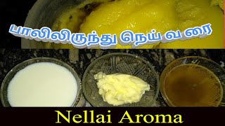 MILK TO GHEE/how to prepare pure ghee at home in tamil