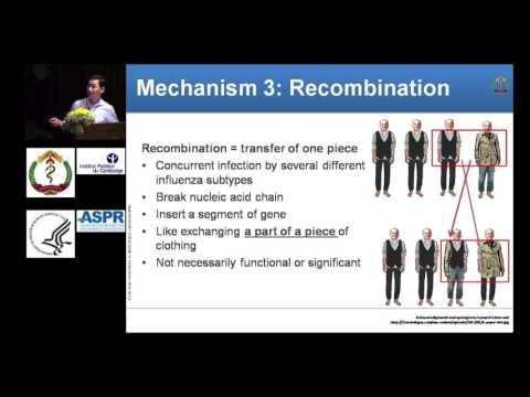 Basic science - Mutation, reassortment, recombination, drift and shift