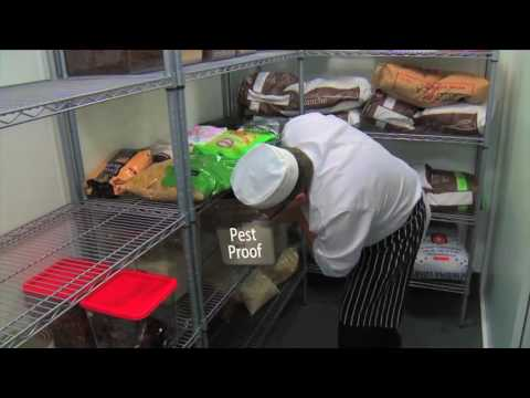 Food safety coaching - Pest control