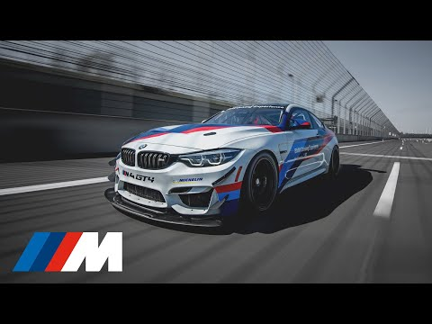 An adventure on the tarmac: the BMW Driving Experience with the BMW M4 GT4.
