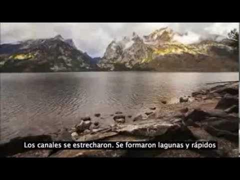 ¿Cómo Pueden Los Lobos Cambiar El Curso De Un Río ? (YELLOWSTONE)