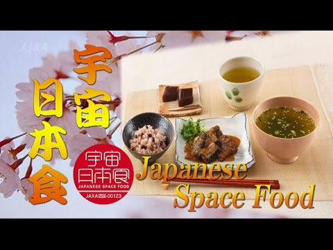 Japanese Space Food