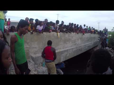 Catching Crocodile - Hellshire Bridge, Portmore, St Catherine, Jamaica