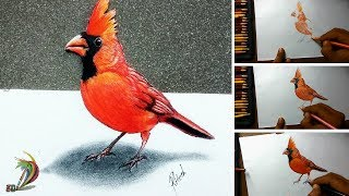 3D Drawing Trick Art | How to draw 3d bird on paper | Very easy - step by step
