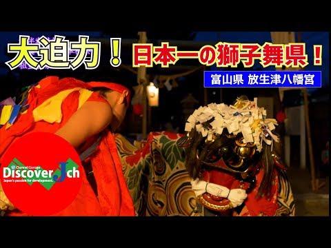 【 4K 】大迫力!日本一の獅子舞県!富山の獅子舞!富山県射水市 放生津八幡宮