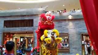 cny 2015 acrobatic lion dance ma ln by kwong ngai mid valley megamall 18 2 2015 4k uhd