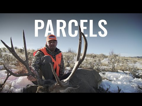 PARCELS - A Colorado 4th Season Rifle Mule Deer Hunt