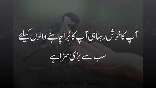 Dosto Agar Koi Insan Bohat Zeada Hansta Hai Voice Of Tipu Shaikh