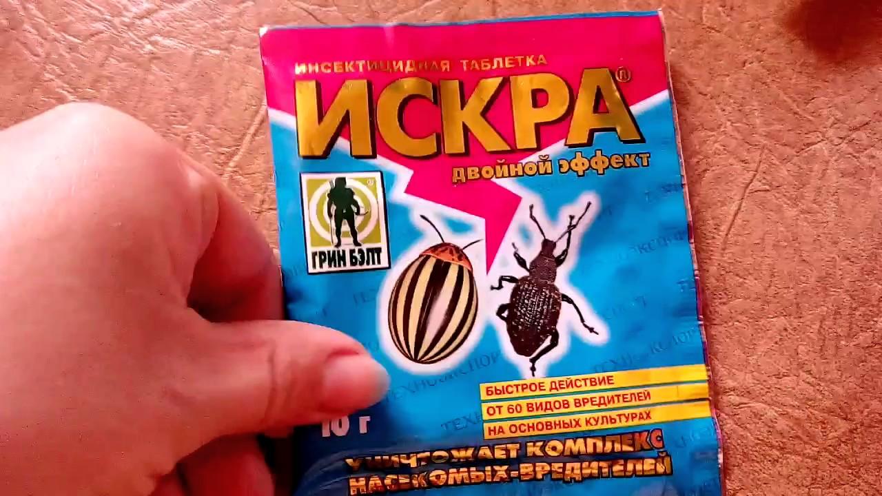 Готовим раствор для обработки против комплекса насекомых вредителей - Искра , двойной эффект