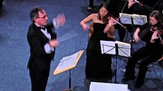 Brahms   Symphony No.1 in C minor . I  Un poco sostenuto - Allegro