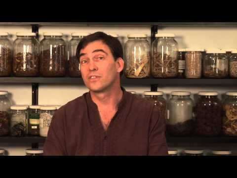 Herbal Anxiety Medicine
