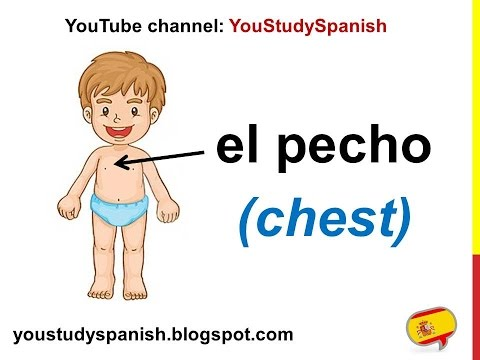 Spanish Lesson 21 - BODY PARTS In Spanish Vocabulary Las Partes Del Cuerpo En Español