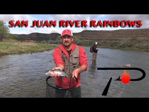San Juan River Trout Fishing