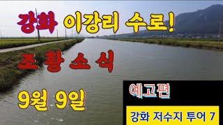 [강화 붕어낚시 수로권 조황 소식2]강화 이강리 수로 …