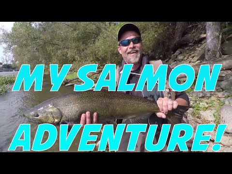 Fishing For Fall Salmon - Oswego River Trout And Salmon Fishing