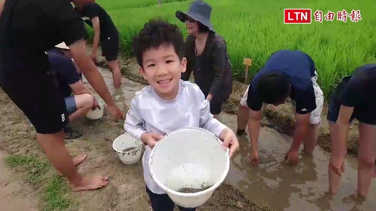作伙來種田好玩 臺南後壁農事體驗變地方創生 - YouTube