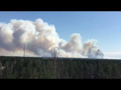 Пожар в Чернобыльской зоне отчуждения, новые очаги возгорания, прямо сейчас