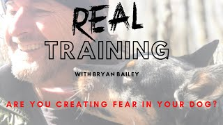 Are You Creating Fear In Your Dog?