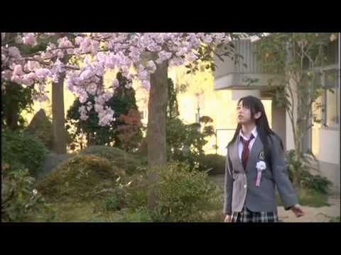 AKB48- Sakura no Hanabiratachi MV