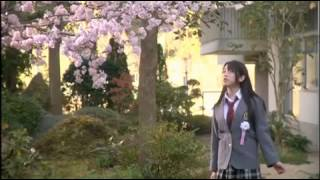 Gambar cover AKB48- Sakura no Hanabiratachi MV