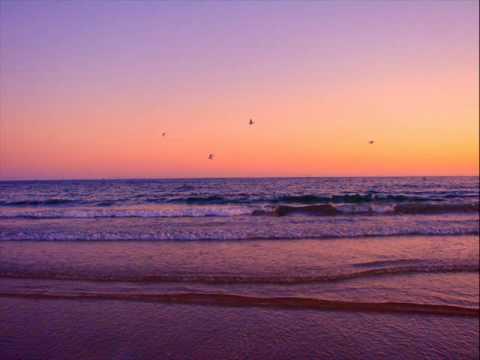The Violet Hour Lyrics- By Seawolf