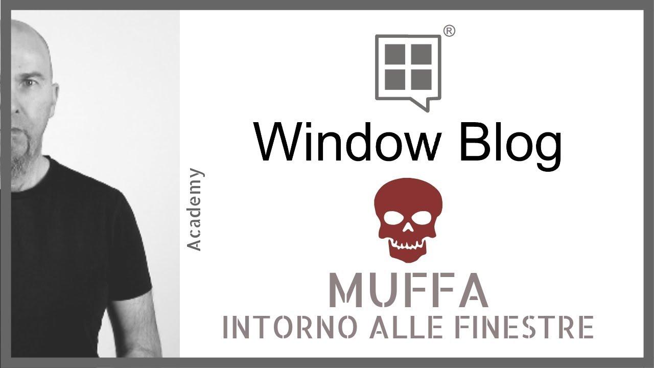 Muffa Vicino Agli Infissi muffa intorno alle finestre: ecco quello che devi sapere: perché, come,  cosa!
