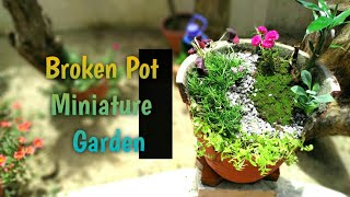 brokenpotidea #miniaturegarden #garden #malayalam #turtlevine #butt...