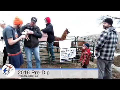 2016 Courage #PolarBearDip Pre-Dip @BTToronto