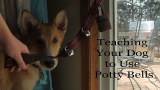 Teaching Your Dog To Use Potty Bells