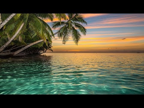 Ho'oponopono Healing Music, Relaxing Sleep Music, Meditation Music, Music for Relaxation