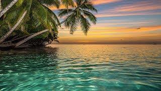 Ho'oponopono Healing Music, Relaxing Sleep Music, Meditation Music, Music for Relaxation