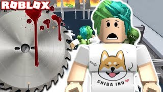 MOST DANGEROUS STUNT EVER! SURVIVE THE CRUSHERS in ROBLOX CAR CRUSHERS 2