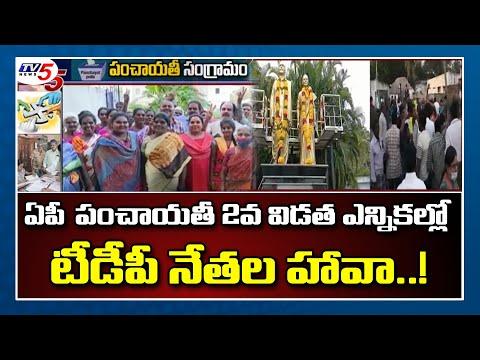 AP పంచాయతీ 2వ విడత ఎన్నికల్లో TDP నేతల హావా..! | AP Panchayat Election 2021 Latest News| TV5 News