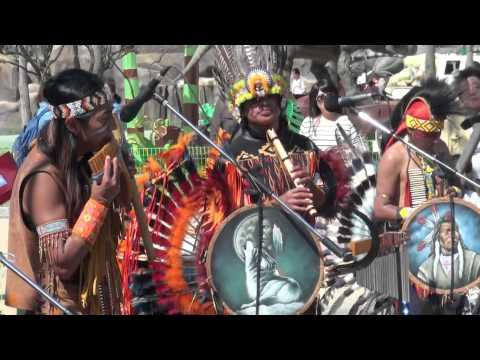 Ecuador folk music - Pan flute (antara), Pingullo