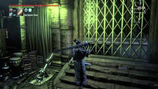 Flynn's Video Game Journeys-Bloodborne New Update Old Hunters PT 2