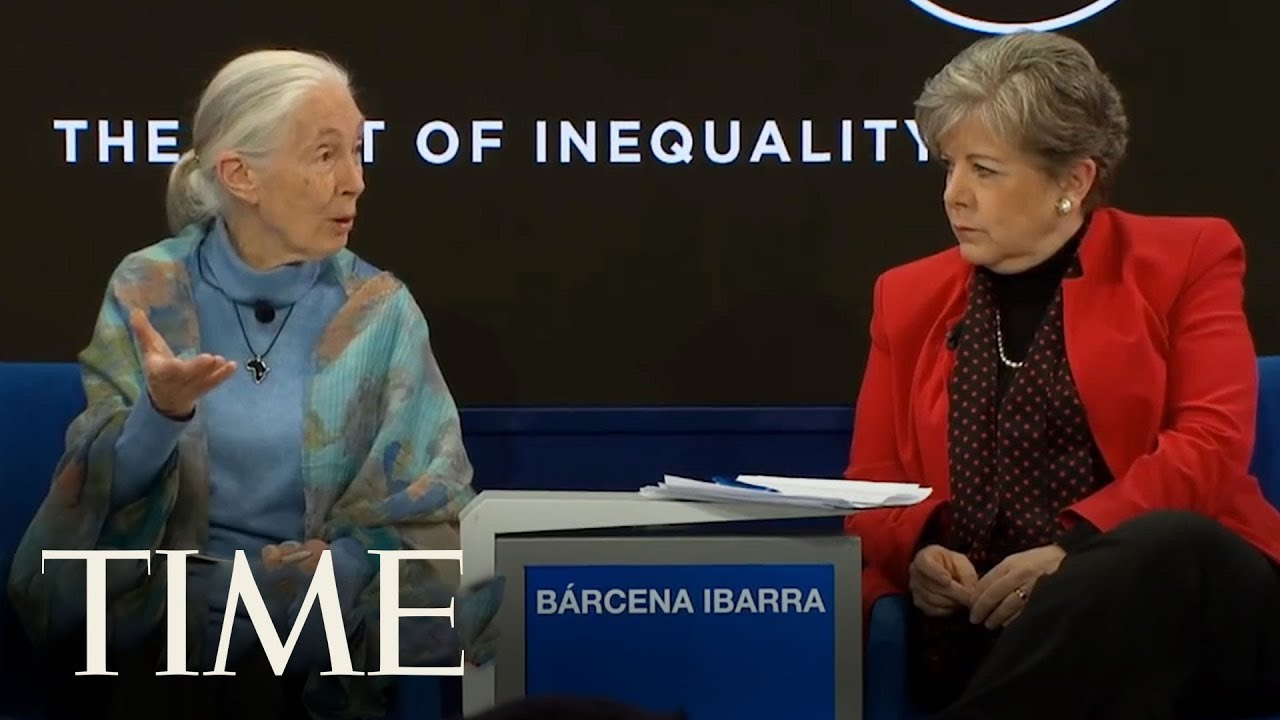 Historian calls out billionaires for tax evasion at World