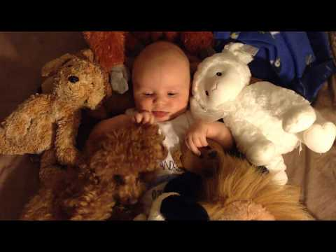 Baby with toy poodle and friends