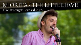 Tony Baboon - Miorita / The Little Ewe (Live at Sziget Festival 2015)