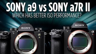 Check out the Sony a9 here: http://amzn.to/2qYczyk Sony a7R II: htt...