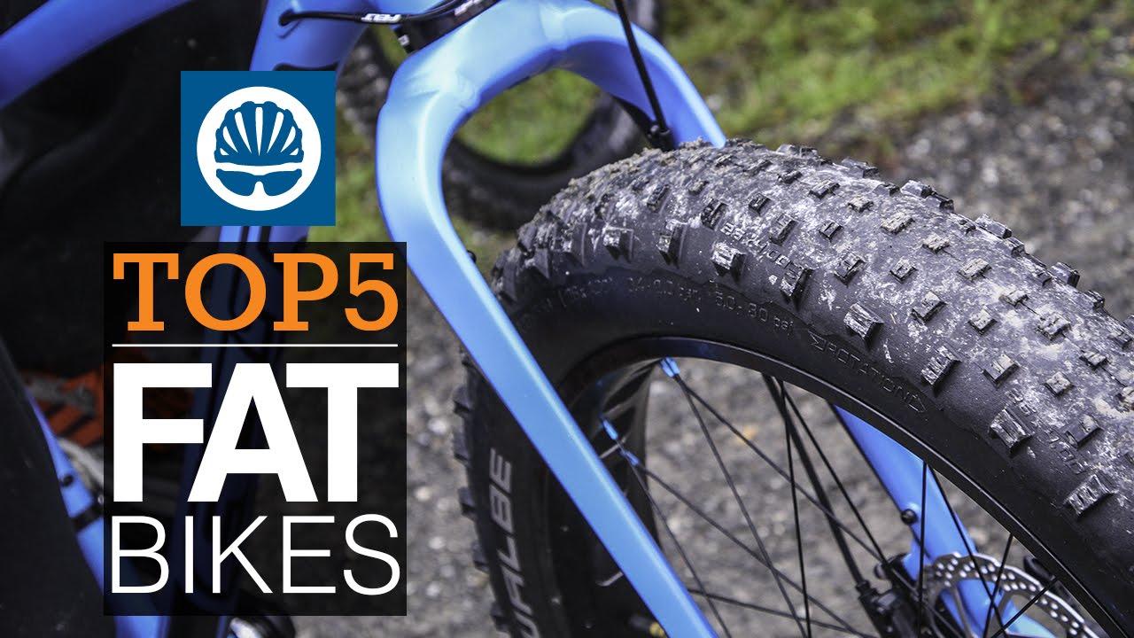 top 5 fat bikes
