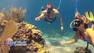 Coral World Ocean Park - Snuba