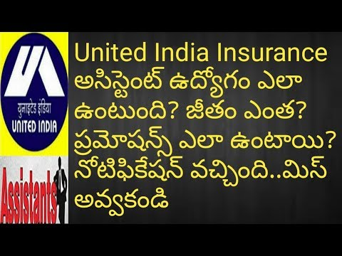 United India Insurance Assistant Job Profile(Work,salary,Pramotions)