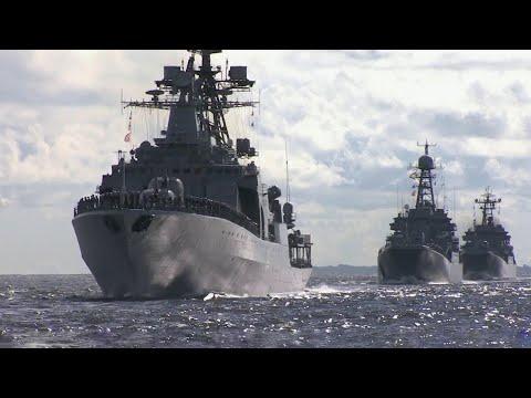 Вопрос: Как назвать военно-морскими именами котят, родившихся в день ВМФ?