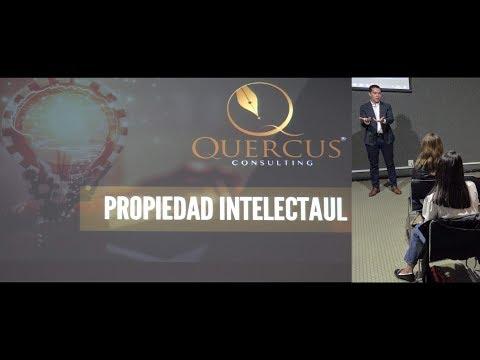 Propiedad Intelectual (Pablo Robles)