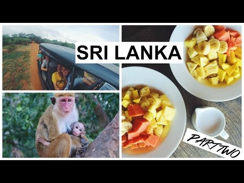 SAFARI FUN AT YALA NATIONAL PARK | SRI LANKA #2