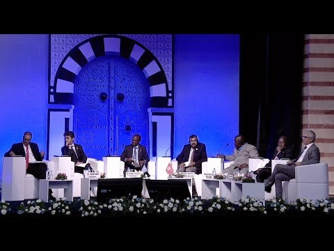WTIS-17 Plenary Session 1: Fostering a healthy investment climate with better data