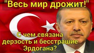 """""""Весь мир дрожит! С чем связана невиданная дерзость и бесстрашие Эрдогана?"""