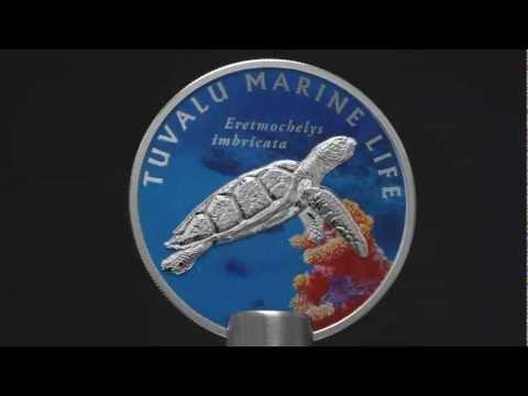 CIT - Tuvalu Marine Life - Turtle